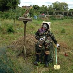 Best Scarecrow
