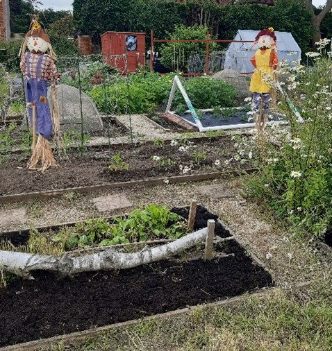 Allotment Results